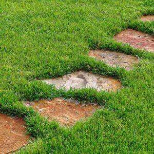 Ruta en camina con piedras lajas